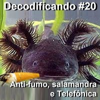 decodificando20