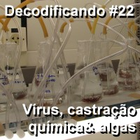 Decodificando22